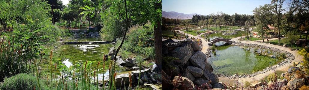 باغ گیاه شناسی مشهد Mashhad Botanical Garden mi 1030x303 - آشنایی با پارک های مشهد