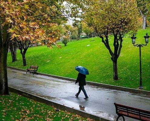 Mashhad Parks 500mi 495x400 - Blog