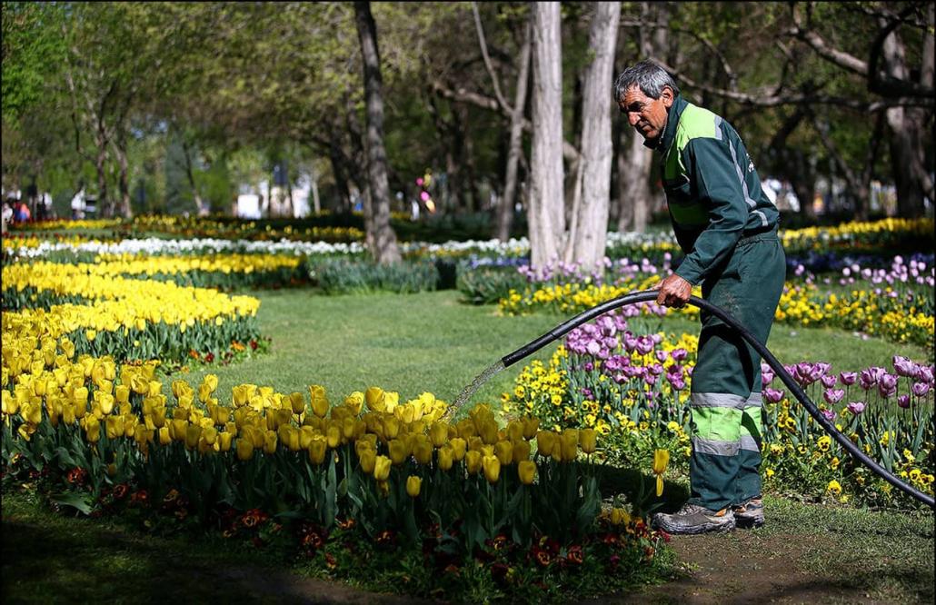 Reyhaneh Womens Park بوستان ریحانه مشهد min 1030x666 - آشنایی با پارک های مشهد